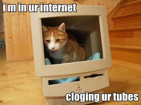 i-m-in-ur-internet-cloging-ur-tubes